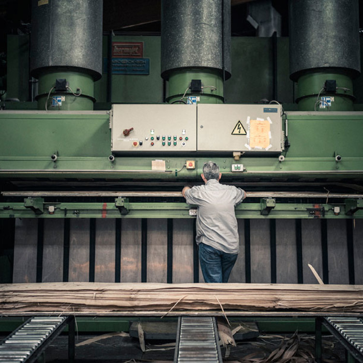 Furnier-Produktion